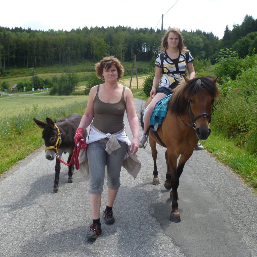 Pferde_und_Eselwanderung