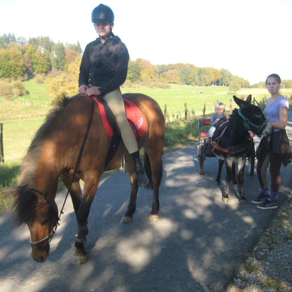 Pferde_und_Eselwanderung_3